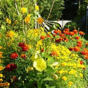 Johanna Wirth - Landschaftsarchitektin - Gartenplanung, farbliche Harmonie