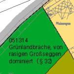 Johanna Wirth - Landschaftsarchitektin - Landschaftsplanung, Biotopkartierung, Detail